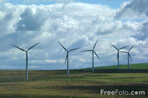 Wind turbine crop